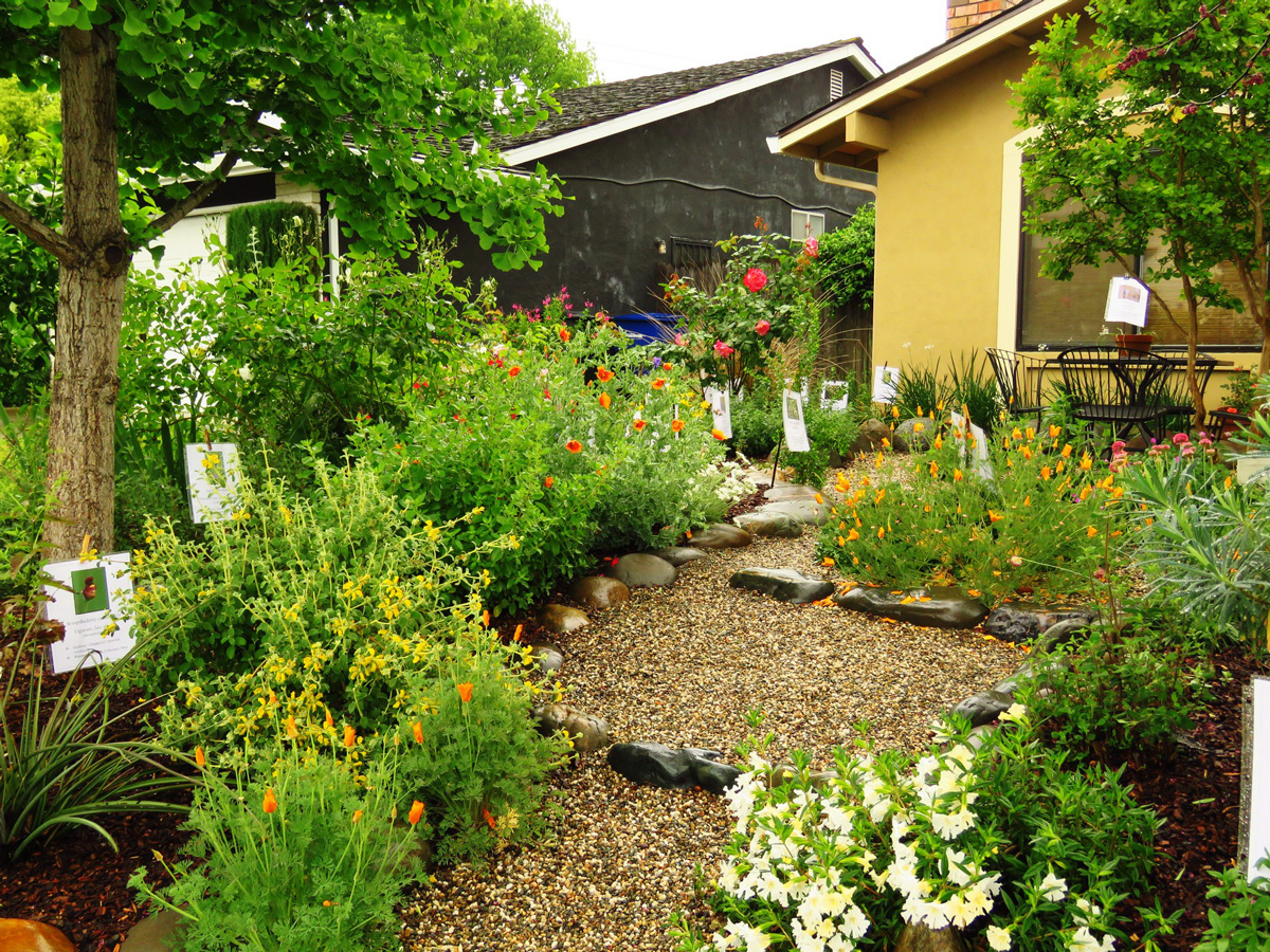 - Gardening - California Native Plant Society